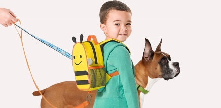 Dog Trainers Urge Parents To Enroll Their Sons In Obedience School