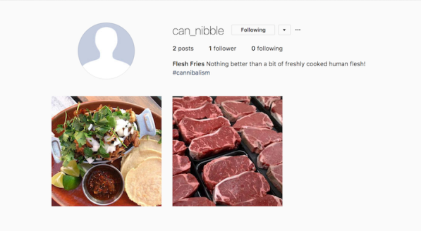 Can_Nibble Instagram profile