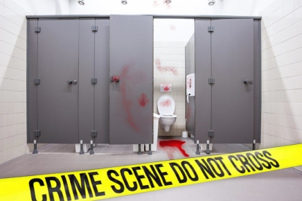 "Suspected Murder Scene In Ladies' Restroom ""Just A Mooncup Mishap"""
